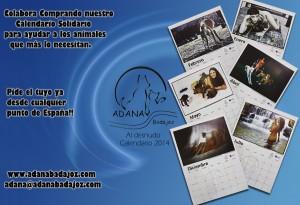 collageweb(1)