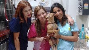 HOLLY, LOLA, JULIA Y RAQUEL